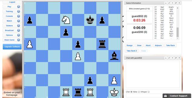 Chess platforms