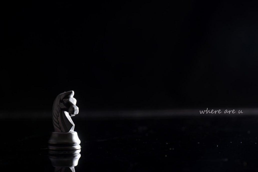 white chess knight