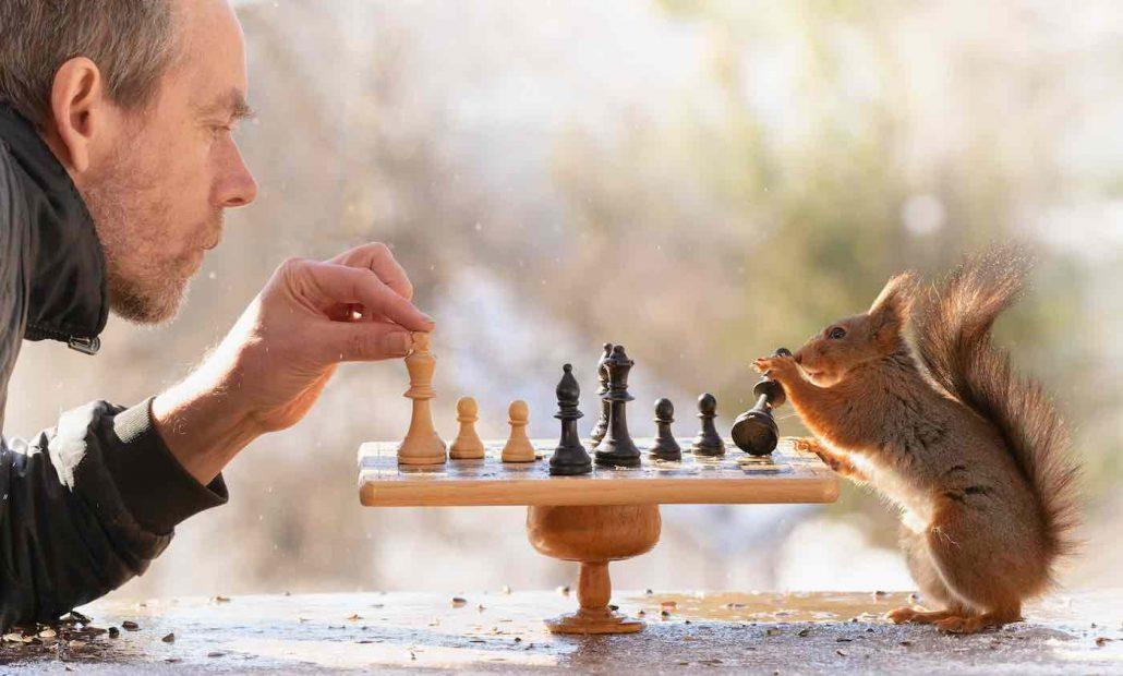 chess academy improvement
